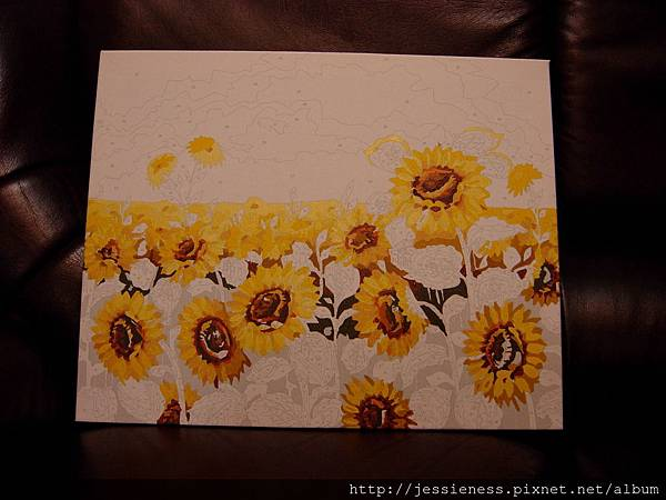 sunflower008