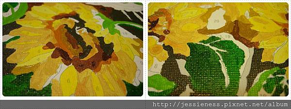 sunflower011