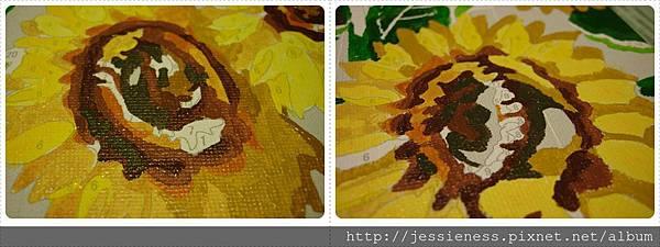 sunflower012