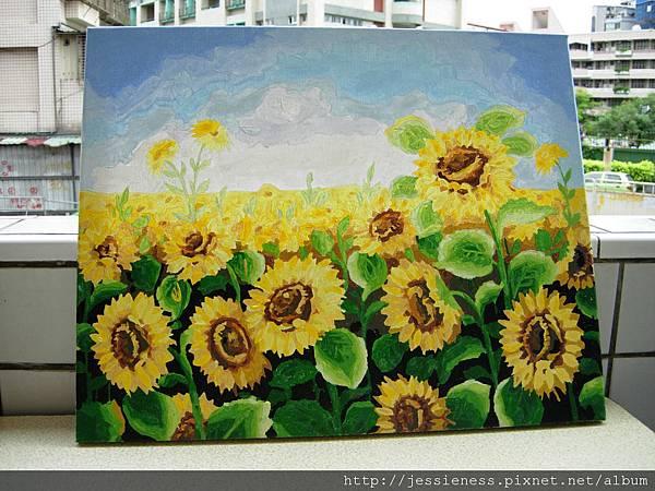 sunflower016