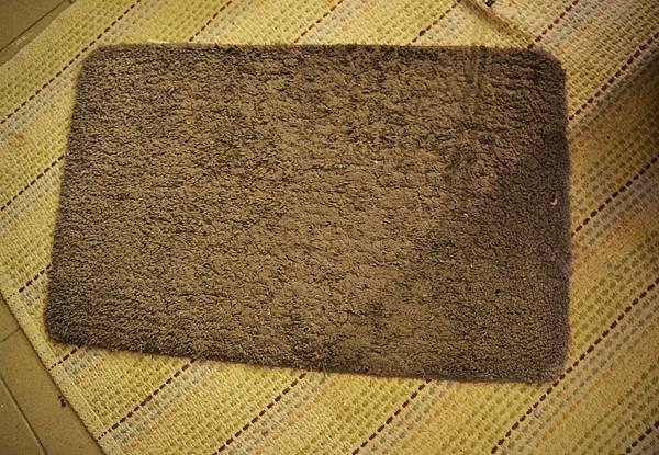 玄關地毯 (宜得利)