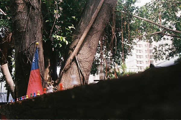 眷村內的國慶氣氛,總是比都市來的濃厚。