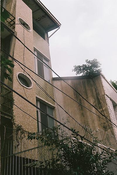 巷子內的老房子