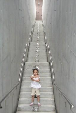 博物館階梯
