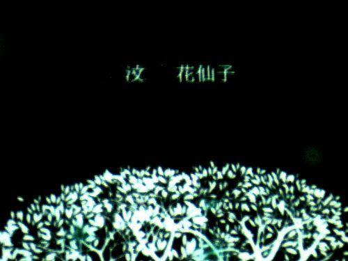 花仙子-3