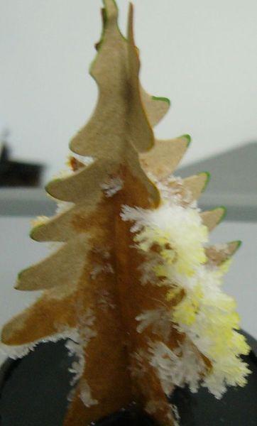 聖誕樹花3