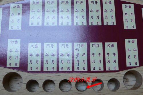 乳牙盒1.jpg
