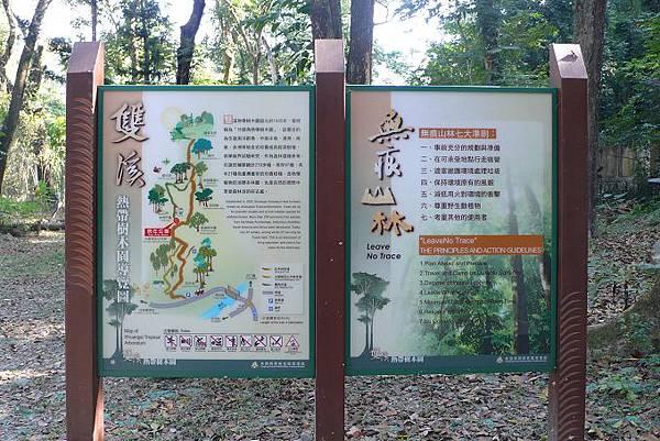 雙溪熱帶母樹林.jpg