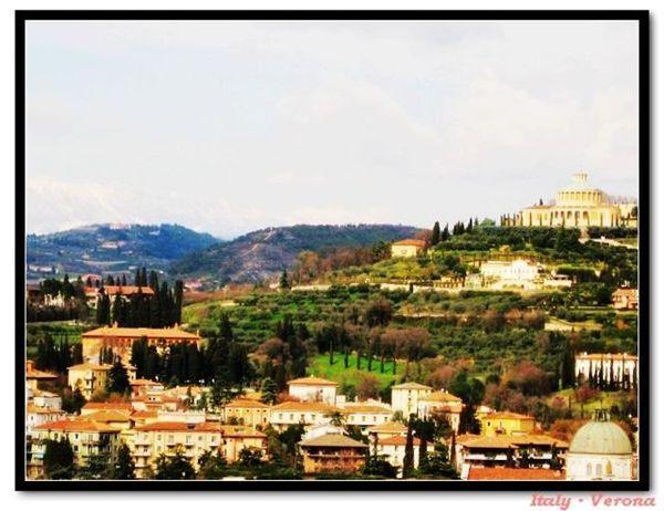 Verona_towerview6.jpg