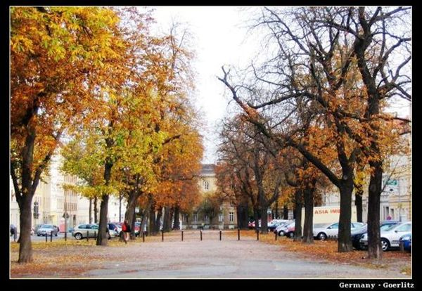 GZ_elisabethstrasse.jpg