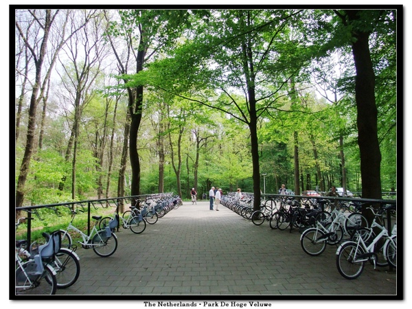 park_whitebike.jpg