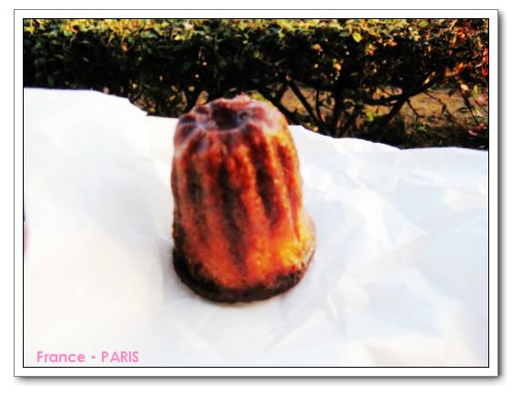 Laduree_Canele.jpg