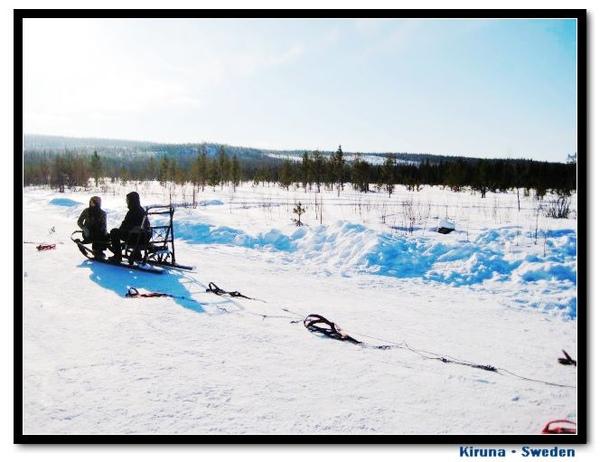 Kiruna_D1_sledge.jpg