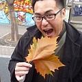 阿麵VS大楓葉