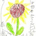 世宇-向日葵-20111114.jpg