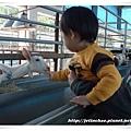 2009-1-26 下午 03-18-03.JPG