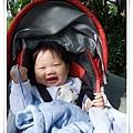 2009-1-16 上午 11-36-09.JPG