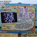 2009-5-16 下午 12-03-48.JPG