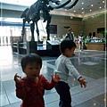 2009-11-1 上午 11-03-35.JPG
