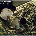 2009-11-6 下午 12-38-09.JPG