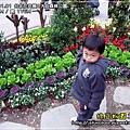 2010-1-1 下午 04-31-25.JPG