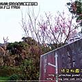 2010-2-23 下午 05-19-54.JPG