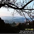 2010-2-23 下午 05-22-42.JPG