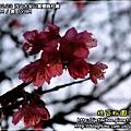 2010-2-23 下午 05-40-07.JPG