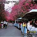 2010-2-8 下午 01-37-06.JPG