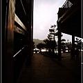 2010-2-8 下午 04-36-34.JPG