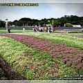 2010-11-24 下午 12-13-10.JPG