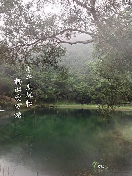 亭午息群物獨游愛方溏.jpg