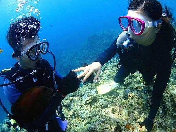 海底求婚4.jpg