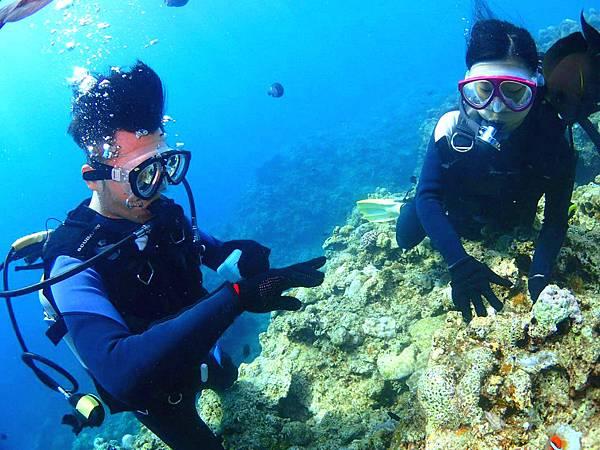 海底求婚3.jpg