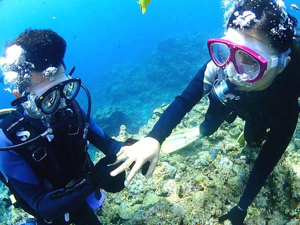 海底求婚5.jpg
