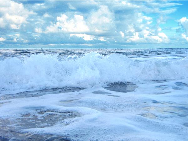 小魚最喜歡的內碑海浪