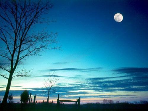 圓月.jpg
