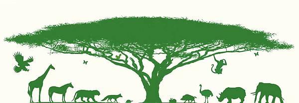 大的。動物們。淺綠。黃底.jpg