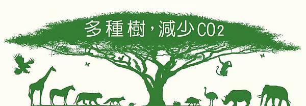 1多種樹。拉字體.jpg