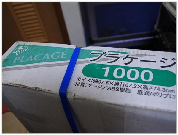 nEO_IMG_IMG_7361.jpg