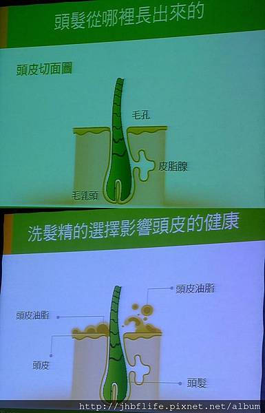 P1010747-vert.jpg