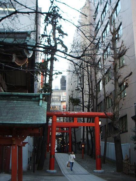 高樓間的神社