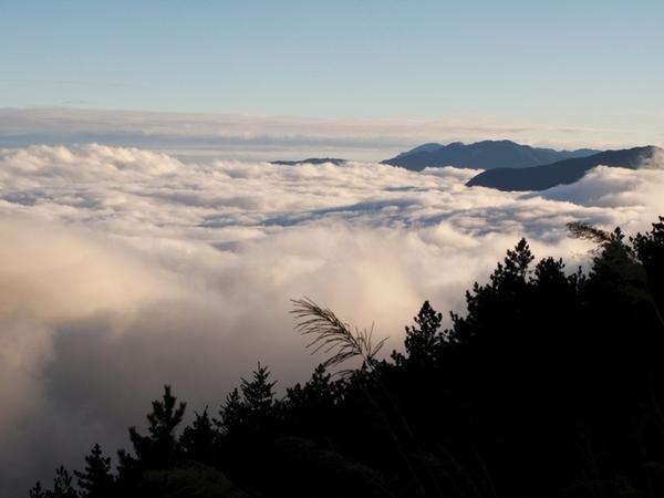 南橫美麗的雲海