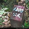 157668c3e34bbe[1].jpg