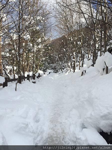 北海道9日遊 412.JPG
