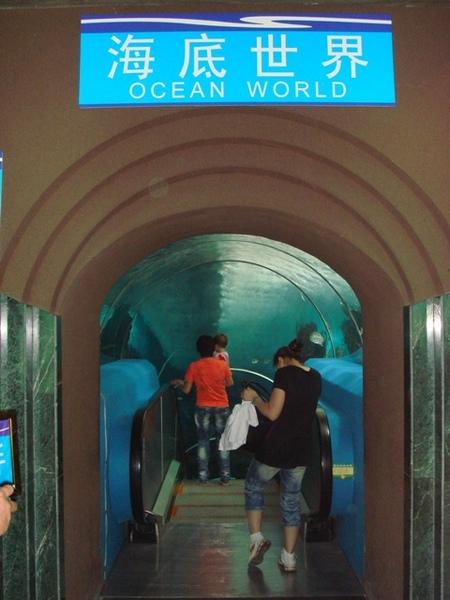 海洋馆的海底世界