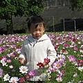 2009.01 河濱公園4