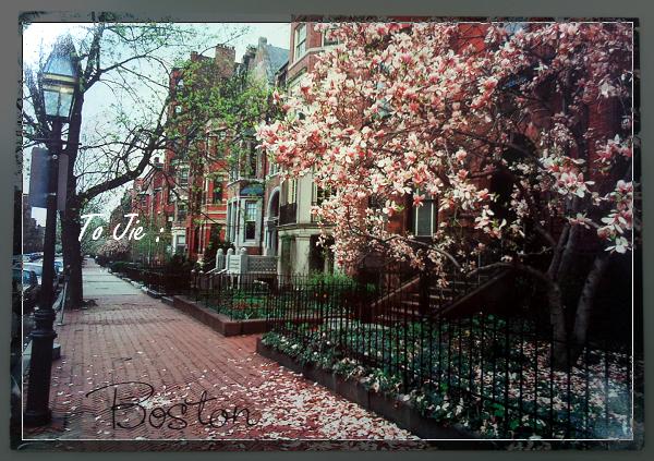 2006.08 BOSTON