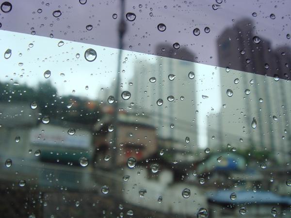 29回國的下雨天.JPG