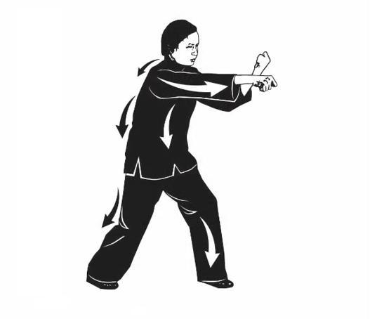 Pak  Mei fist -1